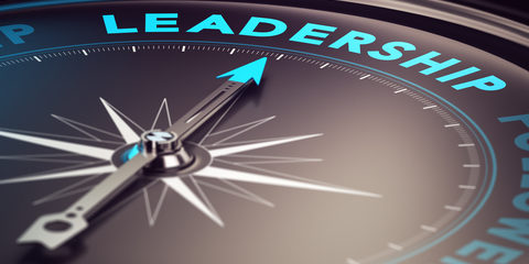 Strategies for Accounting Practice Leadership